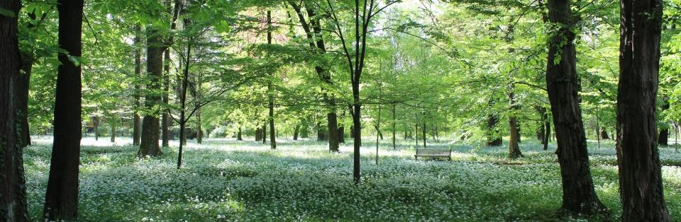 Primavera a Monza